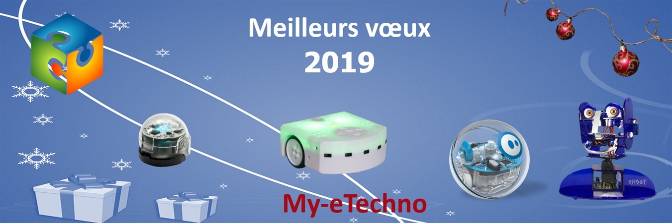 Voeux 2019